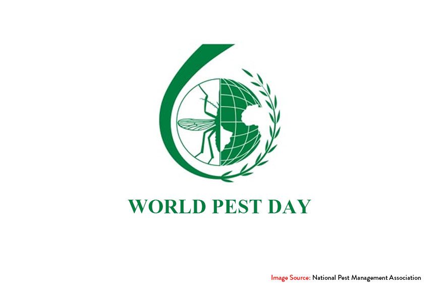 What is World Pest Day and Why Is It Celebrated?